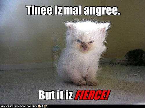 Tinee iz mai angree. FIERCE! But it iz