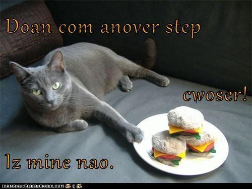 Cheezburger Image 5999426816