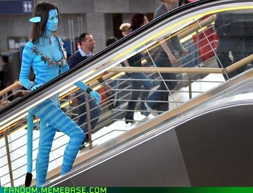 Avatar cosplay movies pandora scifi - 5999499008