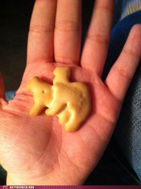 animal crackers dirty crackers x rated art class - 6000051712