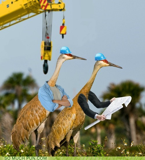 construction crane cranes double meaning Hall of Fame literalism - 6000072192