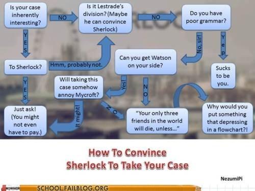 classic literature sherlock holmes take the case - 6000390656