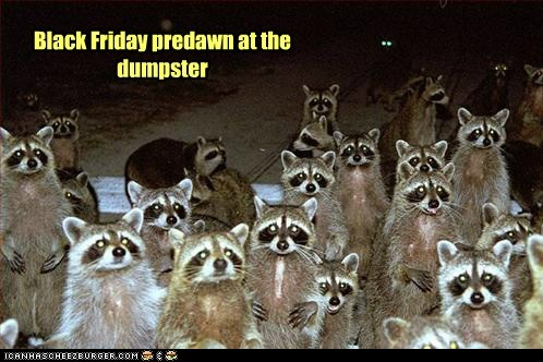 black friday,crowd,dumpster,rabid,raccoons,shoppers