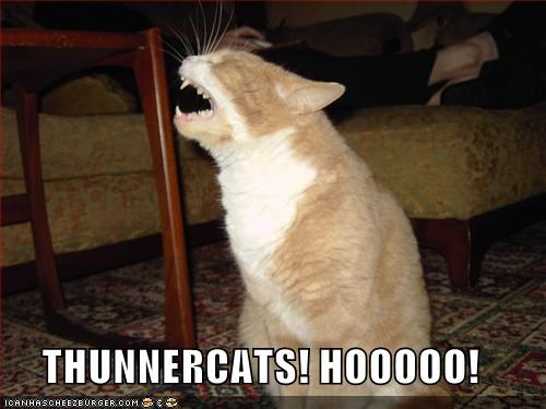 80s cartoons lolcats television thundercats TV - 600148736