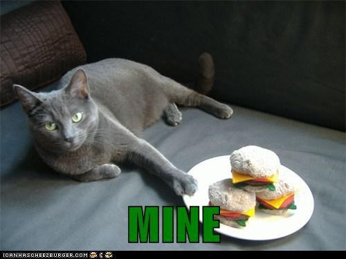 Cheezburger Image 6002060288