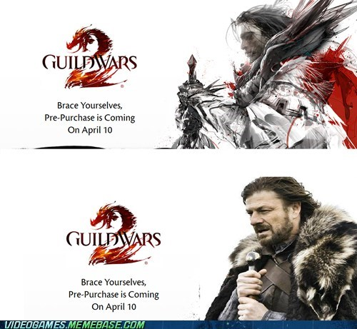 arenanet brace yourselves guild wars guild wars 2 meme