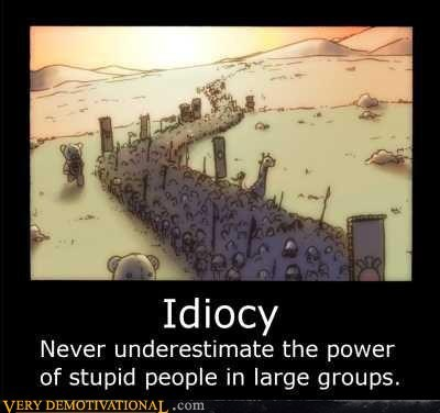 idiocy,large groups,stupid,Terrifying