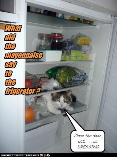 What didthemayonnaisesaytothefrigerator ?