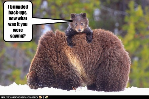 back up bears beat up big insult revenge saying what was that - 6003015680