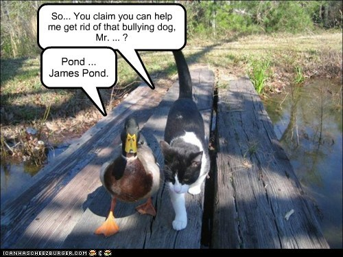 So... You claim you can help me get rid of that bullying dog, Mr. ... ? Pond ... James Pond.