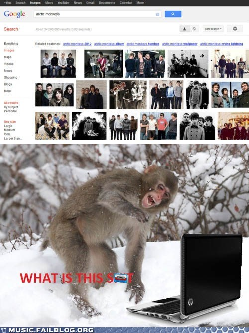 arctic monkeys,google,google image search,monkeys