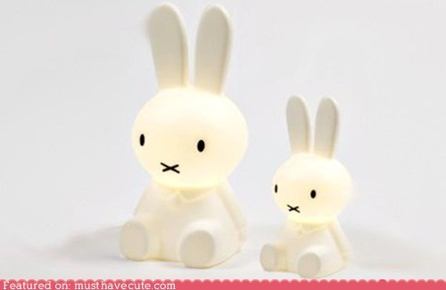 bunnies,glow,lamp,light,miffy