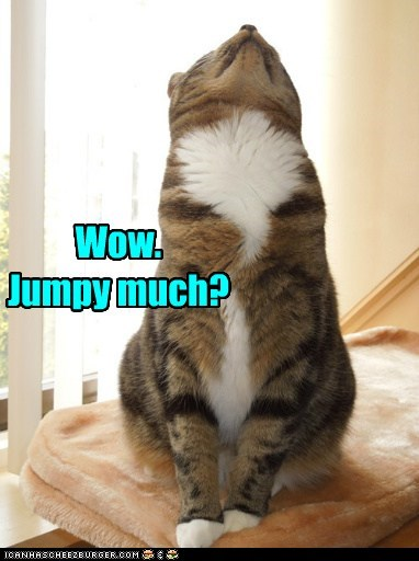 Wow. Jumpy much?
