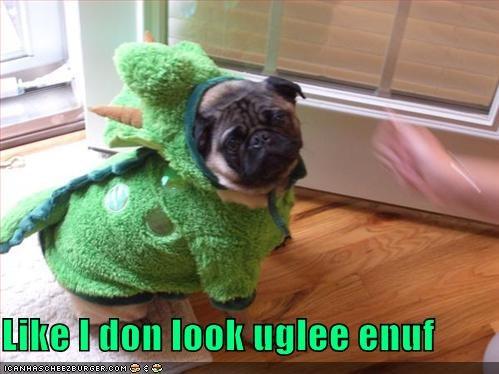 pug,ugly