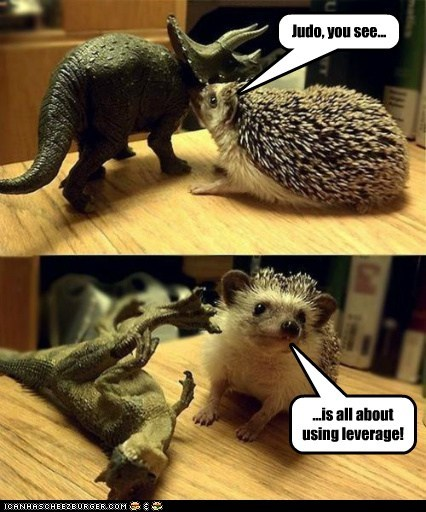 class,dinosaurs,hedgehog,instructor,judo,leverage,opponent,species