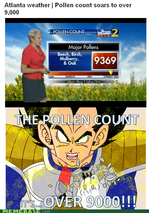 dragonball level Memes pollen power - 6005282048
