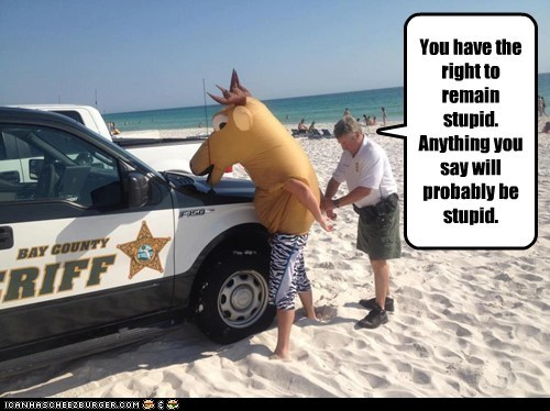 beach,miranda rights,police,political pictures