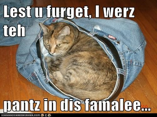 Cheezburger Image 6006675456