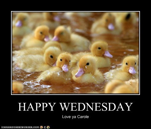 HAPPY WEDNESDAY Love ya Carole