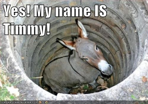 deep donkey farm hole lassie reference stuck well - 6008462080