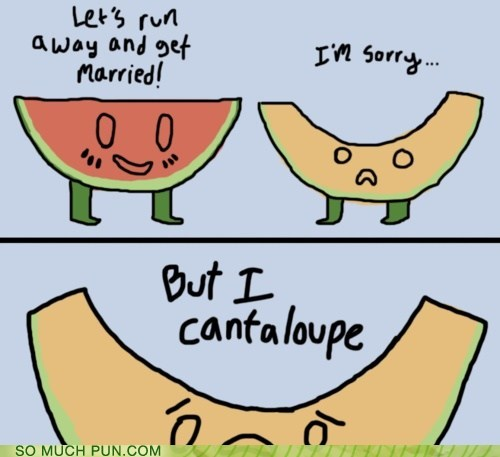 cant,cantaloupe,double meaning,elope,Hall of Fame,homophones,literalism,watermelon
