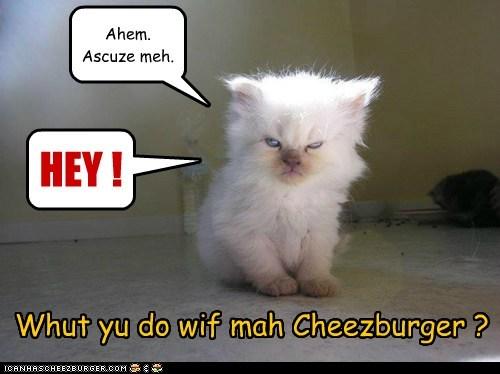 Cheezburger Image 6008813568