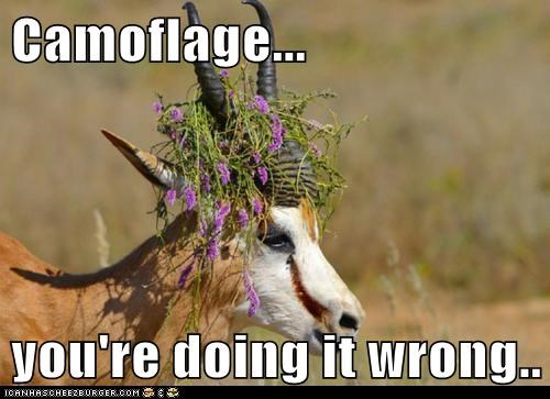 Camoflage... you're doing it wrong..