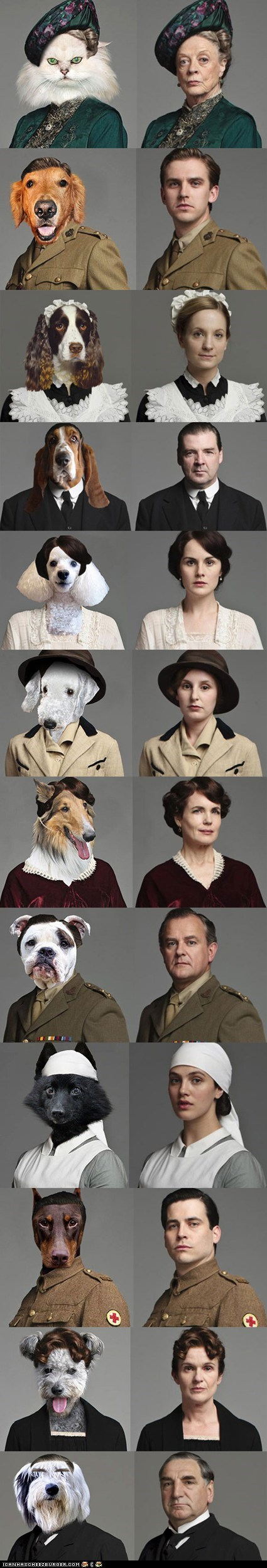 "The Cast of ""Downtown Abbey"" as Cats and Dogs"