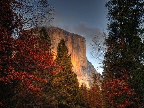 california mountain yosemite - 6009044224