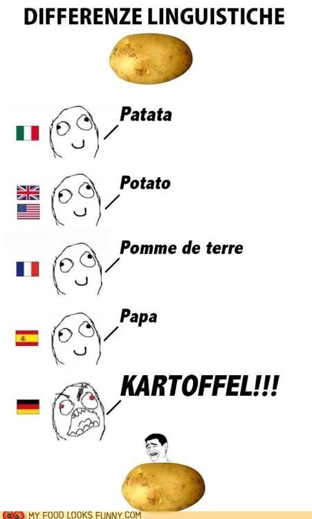 german kartoffel languages potato - 6009558272