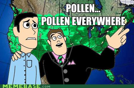 everywhere,Memes,meteorologist,pollen
