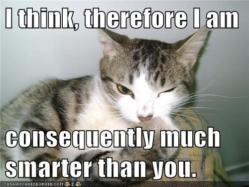am caption cat Cats cogito ergo sum comparison consequently human i think therefore i am much smarter therefore think