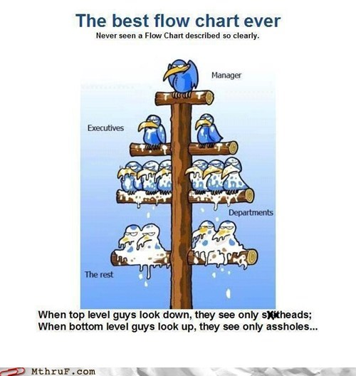 angry birds birds flow chart Hall of Fame manager - 6010501888
