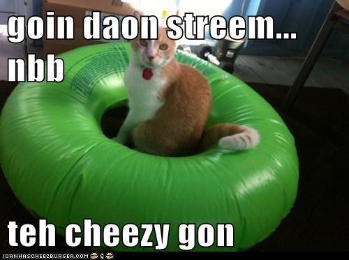 Cheezburger Image 6011185664