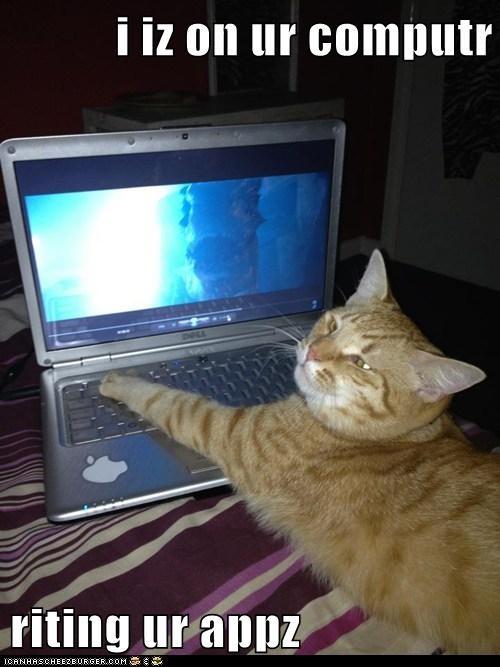 i iz on ur computr riting ur appz lolcats lol cat memes