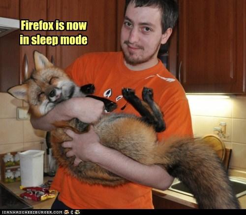 arms cute firefox fox foxes holding puns sleeping - 6011580672