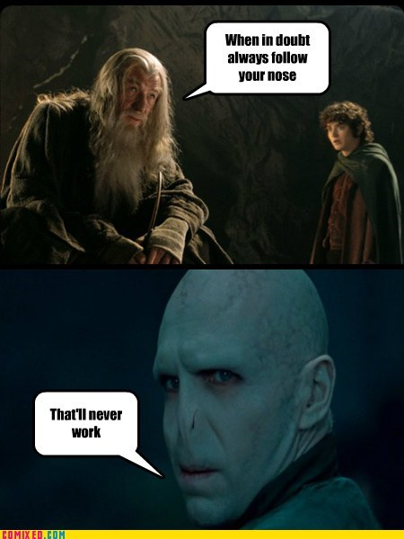 From the Movies Harry Potter Lord of the Rings nose voldemort - 6012470528