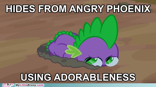 adorable best pony dragon phoenix scared spike TV - 6013126144