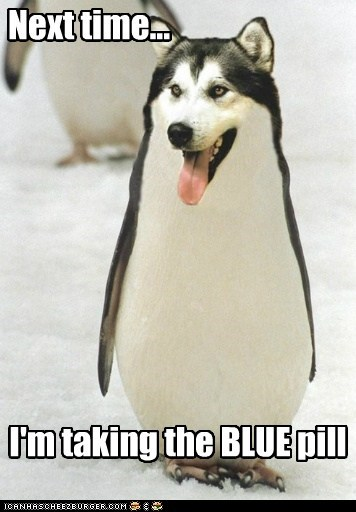 husky,matrix,penguin,reference,sci fi,trippy,wtf
