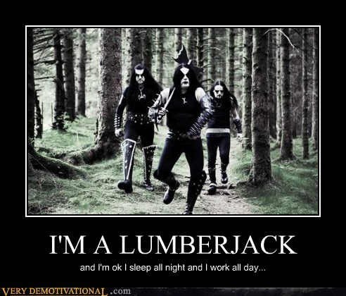 I'M A LUMBERJACK and I'm ok I sleep all night and I work all day...