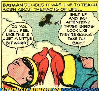 batman bees birds eww robin Straight off the Page wtf - 6013543168