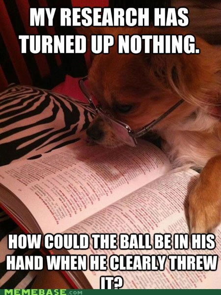 ball dogs Memes physics research