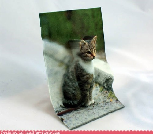 3d custom kitty Photo sculpture
