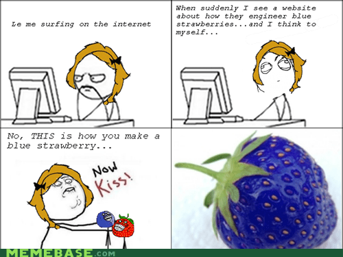 blueberry man fruitmen meme madness Rage Comics strawberry guy - 6014244352