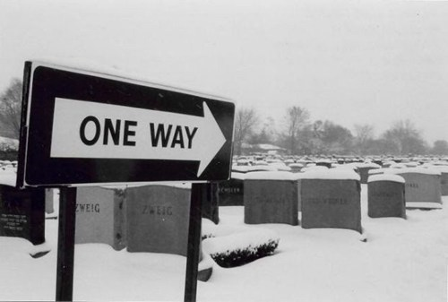 cemetery,Death,irony,signs