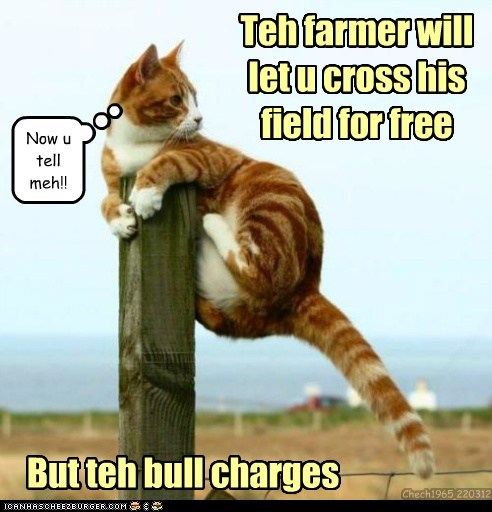 best of the week,bull,charge,charges,cross,farmer,field,free,Hall of Fame,pun,toll
