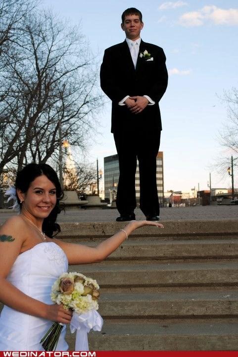 funny wedding photos - 6015023616