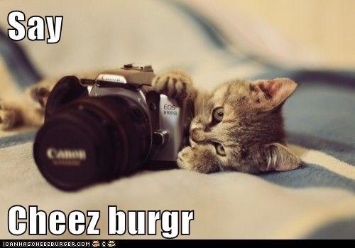 Cheezburger Image 6015134208