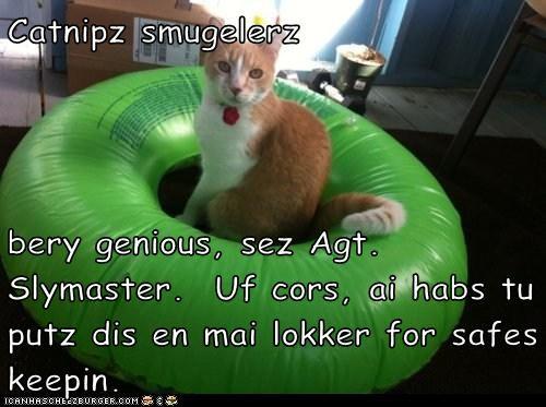 Cheezburger Image 6015488512