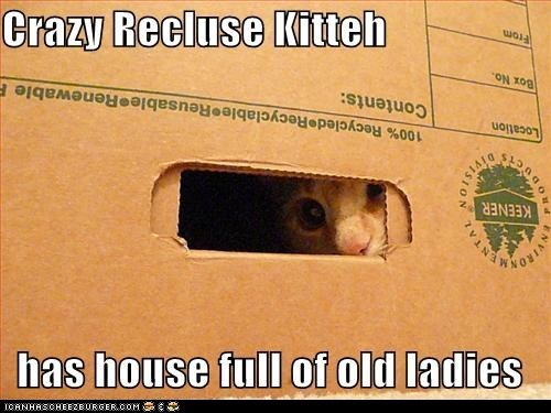 caption,Cats,classics,crazy,creepy,full,house,ladies,old,peeking,recluse